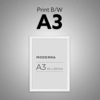 Print Plot A3 B/W